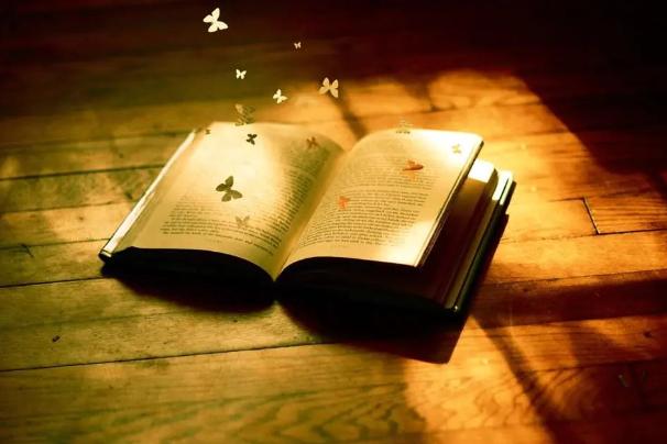 张艳梅:直面现实处境与自我困境的写作 ——2019年中短篇小说综述